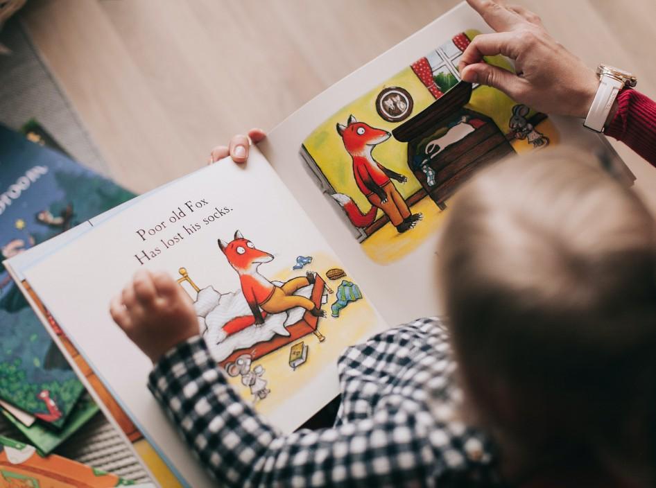 სასარგებლო ინფორმაცია ბავშვთა ადრეული განვითარების პროგრამის შესახებ